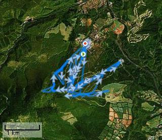 20090320安比スキー 2009-03-20.jpg