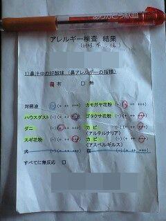 20110416宙アレルギーパッチテスト結果(花粉)masked.jpg